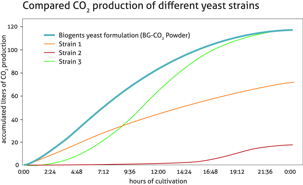 Comparison of the accumulated CO2 production of different yeast strains