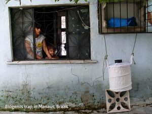 1400 households, 450 Biogents traps, uncounted dengue mosquitoes - a long-term study in Manaus, Brazil