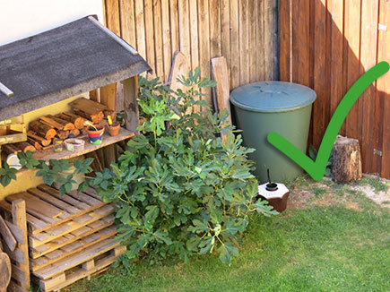 Resting areas of mosquitoes can also be areas with higher humidity such as rain barrels, wells, drains, basements, etc.. They also like piles of wood, where they perfectly can hide.