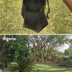 Nigeria: Biogents mosquito trap with BG-Sweetscent and CO2