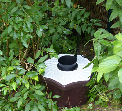Shady areas are a good place to position the mosquito traps.