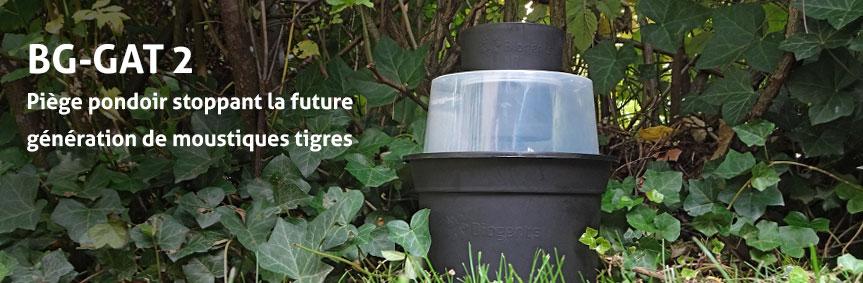 Piège pondoir stoppant la future génération de moustiques tigres
