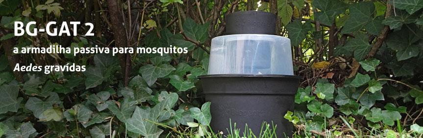 A armadilha passiva para mosquitos Aedes gravídas