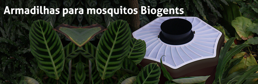 Biogents mosquito traps - eco-friendly and with scientific proof, example BG-Mosquitaire against tiger mosquitoes